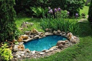 Як організувати штучне водоймище на своїй ділянці
