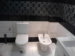 Етапи ремонту туалету