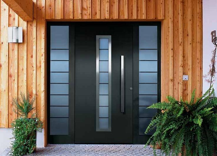 входные двери фото в дом